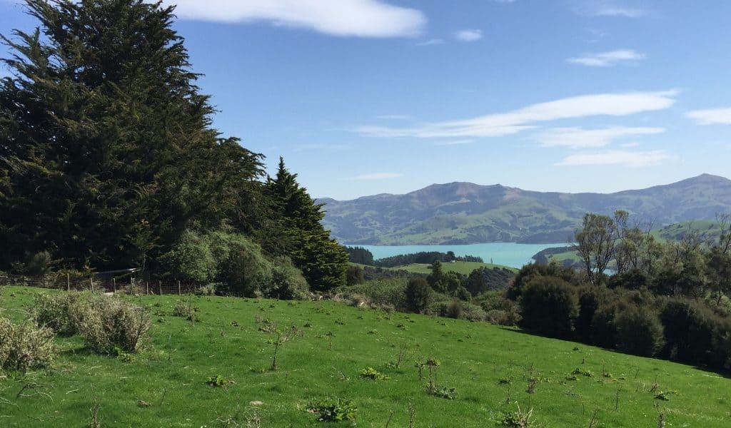 Glenwood Farm