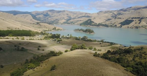 Banks Peninsula | Fox & Associates